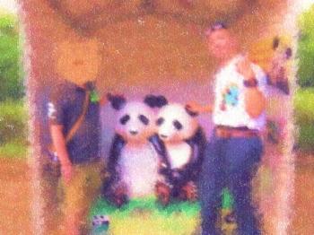 20180916彼氏とランチ&初上野動物園デート その3